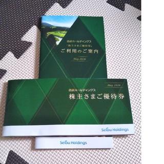 最新 西武ホールディングス 株主優待の1000株分施設利用優待券 冊子(野球)