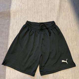 プーマ(PUMA)のプーマ  サッカー パンツ  150(サッカー)