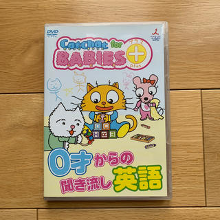 CatChat For BABIES+(プラス) 0才からの聞き流し英語 DVD(キッズ/ファミリー)
