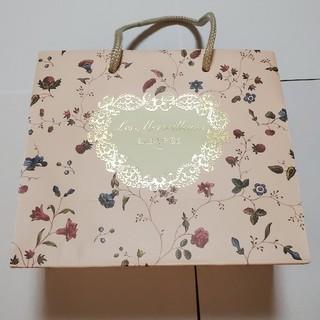 レメルヴェイユーズラデュレ(Les Merveilleuses LADUREE)のLADUREE / (ラデュレ) / 紙袋(ショップ袋)