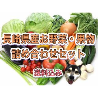 長崎県産 新鮮 野菜 果物 詰め合わせ セット(野菜)