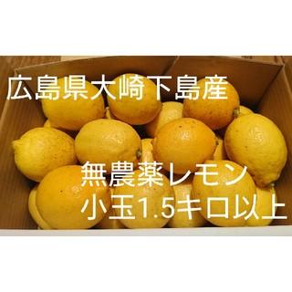 無農薬!広島県大崎下島産 特別栽培 小玉レモン1.5キロ(フルーツ)