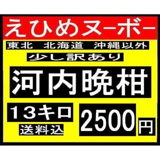 か大11 えひめヌーボーの  少し訳あり 河内晩柑 13キロ(フルーツ)