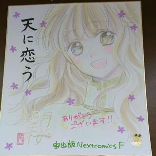 天に恋う 望月桜先生 直筆イラストサイン色紙(サイン)