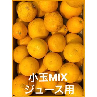 訳あり品 愛媛 宇和ゴールド 15Kg   美生柑 河内晩柑 ジュース用(フルーツ)