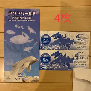 アクアワールド 大洗水族館 前売券8枚(水族館)