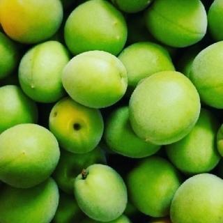 無農薬 青梅 3キロ(フルーツ)
