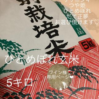 ワイン様専用あなたに♡ひとめぼれ♡ 宮城のお米 5キロ(米/穀物)