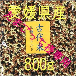 たまごっち様専用  古代米3種ブレンド愛媛県産 800g×2(米/穀物)