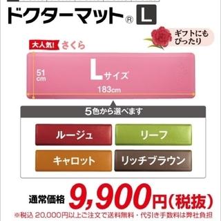 アサヒケイキンゾク(アサヒ軽金属)のアサヒ軽金属 ドクターマットLサイズ(さくら)(キッチンマット)