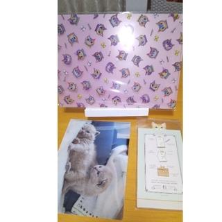 フェリシモ(FELISSIMO)の猫休み クリアファイルとメッセージメモ(ノート/メモ帳/ふせん)