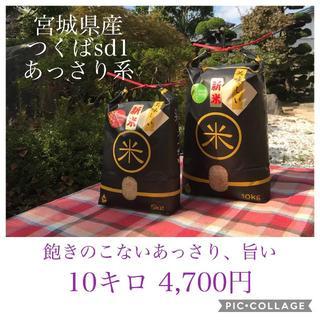 コロナ応援キャンペーン!!あっさりでも旨い✼宮城県産特別栽培つくばSD1(米/穀物)