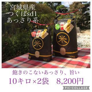 ゆー様専用✳︎あっさりでも旨い✼宮城県産特別栽培つくばSD1(米/穀物)