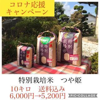 コロナ応援キャンペーン!!光り輝く大粒米✼宮城県産特別栽培つや姫10キロ(米/穀物)