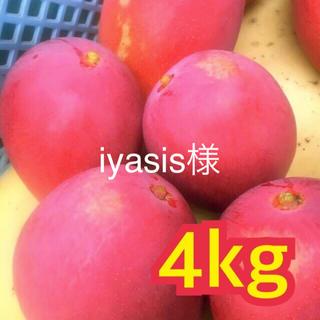 宮崎県産 完熟マンゴー 自家用 ミニマンゴー セット 4kg(フルーツ)