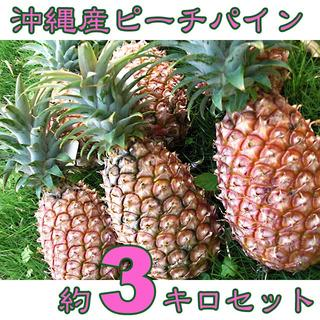 沖縄県八重山産ピーチパイン約3キロ|桃のような香りと甘さがGOOD!(フルーツ)
