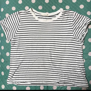 エスタコット(ESTACOT)のボーダー半袖(Tシャツ(半袖/袖なし))