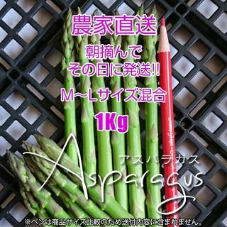 グリーンアスパラ 1kg アスパラガス(野菜)