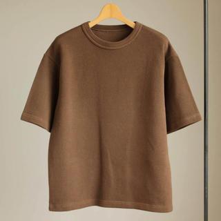 ドゥルカマラ(Dulcamara)のクレプスキュール  鹿の子 半袖 ニット(Tシャツ/カットソー(半袖/袖なし))