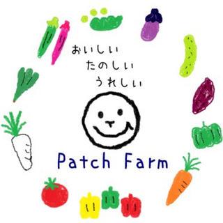【ぱきら様専用】旬彩野菜バスケット(野菜)