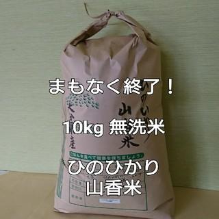 まもなく終了! 10kg 無洗米 令和元年 大分県産 ひのひかり 山香米(米/穀物)