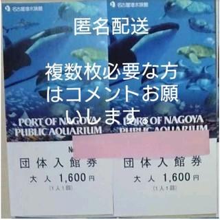 名古屋港水族館 大人チケット2枚(水族館)