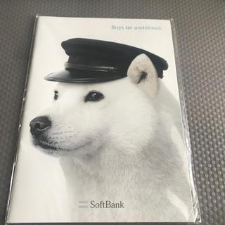 フクオカソフトバンクホークス(福岡ソフトバンクホークス)のお父さん犬 ソフトバンク 非売品(ノベルティグッズ)