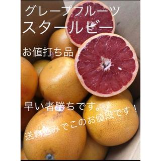 フロリダ産 グレープフルーツ スタールビー 約5kg(フルーツ)