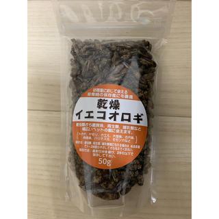 乾燥イエコオロギ50g(爬虫類/両生類用品)