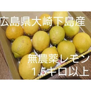 mtk様専用  無農薬!広島県大崎下島産 特別栽培レモン1.5キロ(フルーツ)