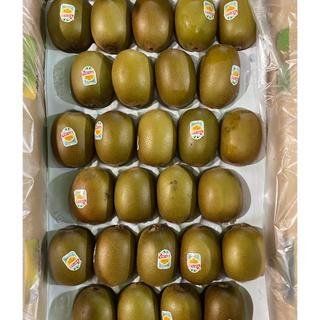 サンゴールドキウイ2L×2箱(フルーツ)