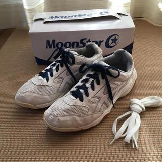 ムーンスター(MOONSTAR )のMoonStar 体育館シューズ 25.0cm(その他)