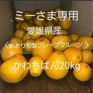 ミーさま専用。愛媛県産 訳あり 和製グレープフルーツかわちばん20kg(フルーツ)