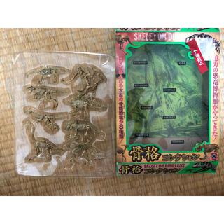 シマムラ(しまむら)のしまむら 骨格コレクション(模型/プラモデル)