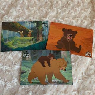 ディズニー(Disney)のディズニー ブラザーベアー ポストカード(使用済み切手/官製はがき)