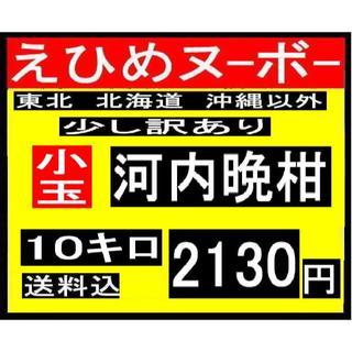 ★ こか2 えひめヌーボーの  少し訳あり 小玉河内晩柑 10キロ (フルーツ)