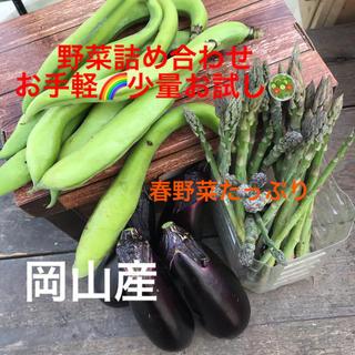 家飲み春野菜セット🥗少量お手軽✨宅急便コンパクトサイズ(野菜)