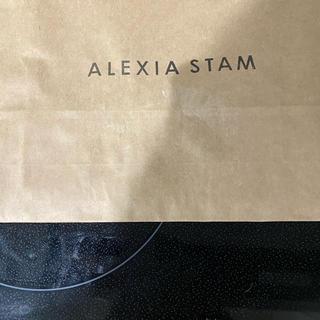 アリシアスタン(ALEXIA STAM)のアリシアスタンのフォトブック(その他)
