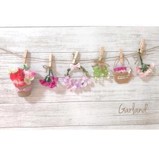 sold、c.ピンク小花スターチス♡ドライフラワー インテリア雑貨玄関装飾(ドライフラワー)