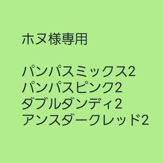ホヌ様専用【パンパスグラス】ミックスカラー 種子30粒(その他)