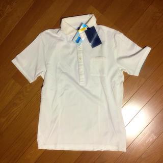 シーケーカルバンクライン(ck Calvin Klein)の新品ck☆カルバンクラインポロシャツ(ポロシャツ)