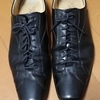 タケオキクチ(TAKEO KIKUCHI)のドレスシューズ/ティーケータケオキクチ/ t.k TAKEO KIKUCHI(ドレス/ビジネス)