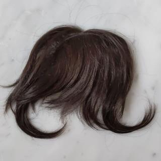 前髪ウィッグ 試着のみ(前髪ウィッグ)