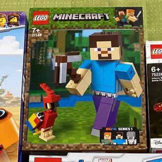 レゴ(Lego)のレゴ  LEGO 21148(模型/プラモデル)