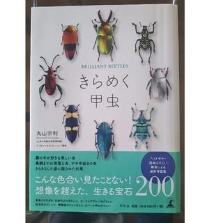 幻冬舎 - きらめく甲虫