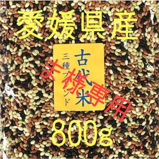 ま様専用 古代米3種ブレンド愛媛県産 800g(米/穀物)