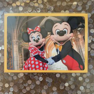 ディズニー(Disney)のディズニー 実写 ポストカード 35枚入り 35周年 ボックス(写真/ポストカード)