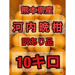 熊本県産 河内晩柑 10キロ 訳あり(フルーツ)