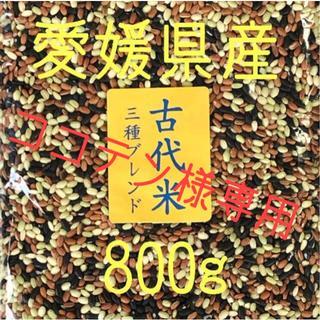 ココテン様専用 古代米3種ブレンド愛媛県産 800g×2(米/穀物)