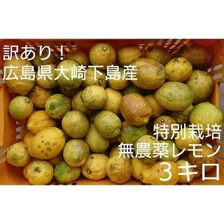 訳あり!広島県大崎下島産 特別栽培 無農薬レモン 3キロ(フルーツ)